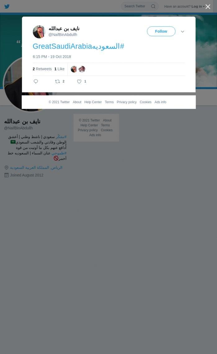 لقطة لاول تغريدة في هاشتاق #السعوديهGreatSaudiArabia